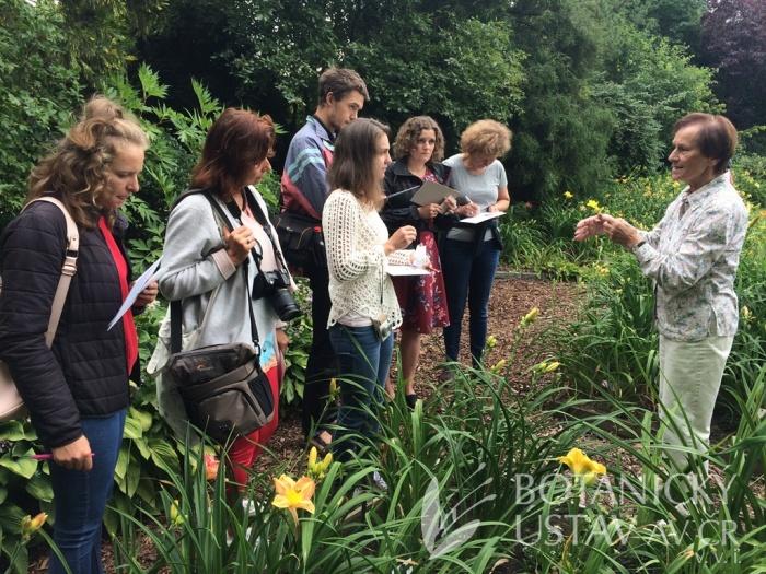 Hemerocallis breeding workshop