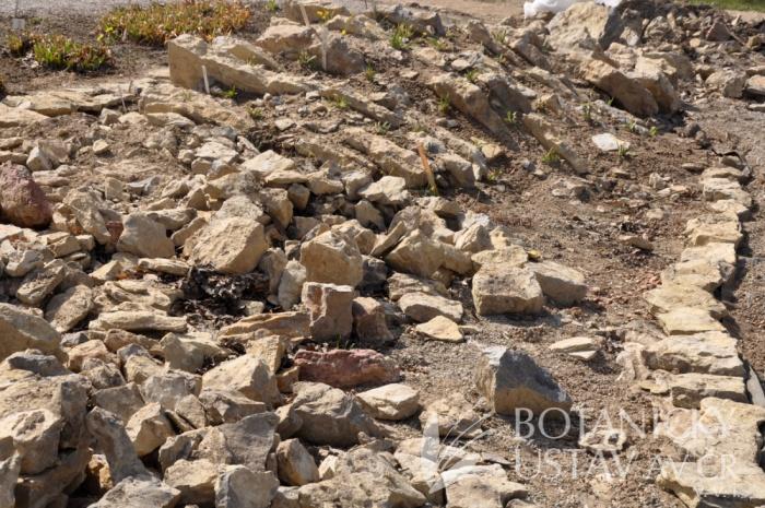 Vápencová skalka (5)