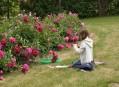 Výsledky soutěže Malování v zahradě