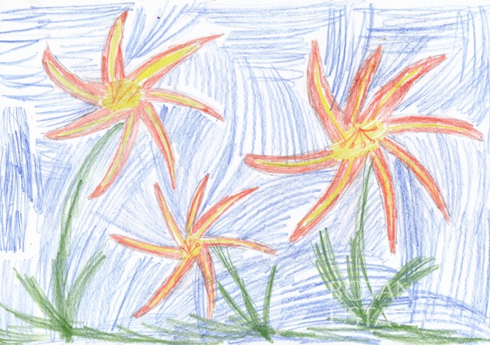 Anna Neuwirthová, 9 let, Průhonice