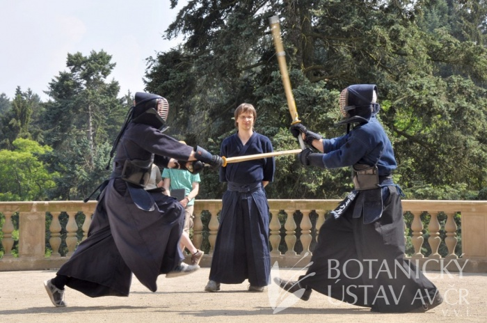 Japonský den 2015 - bojová umění (51)