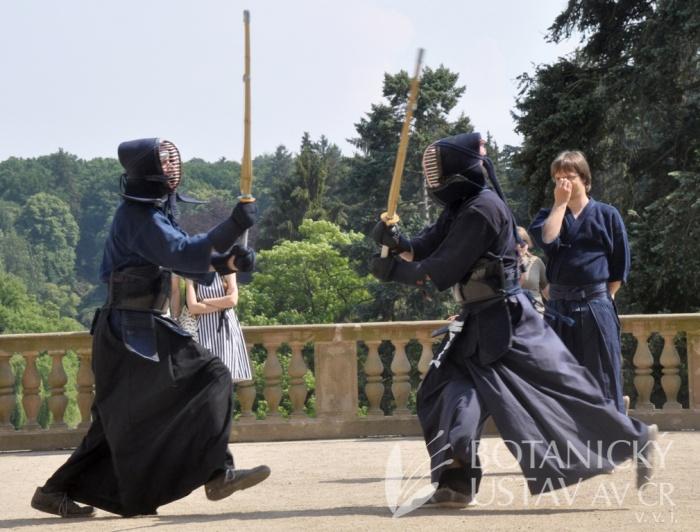 Japonský den 2015 - bojová umění (52)