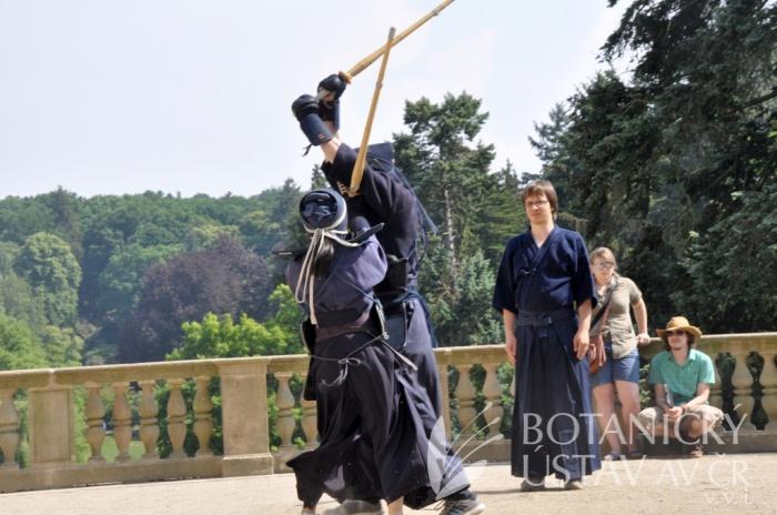 Japonský den 2015 - bojová umění (53)