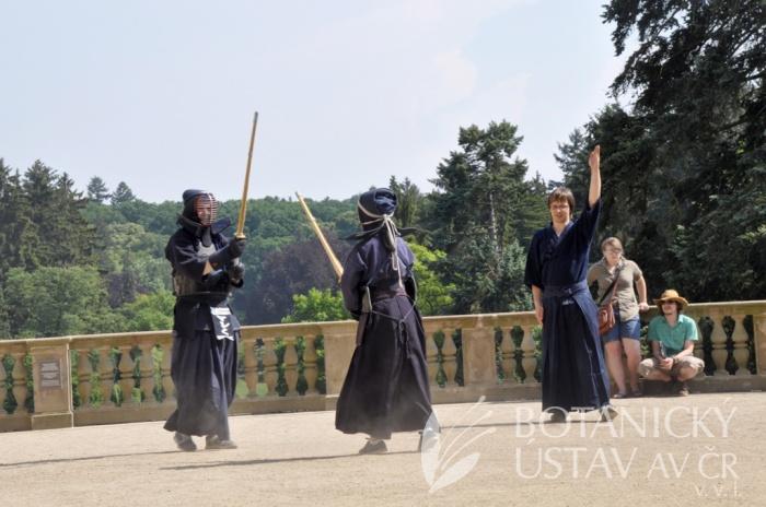Japonský den 2015 - bojová umění (54)