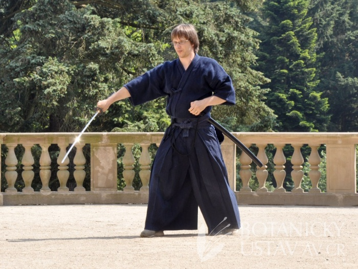 Japonský den 2015 - bojová umění (56)