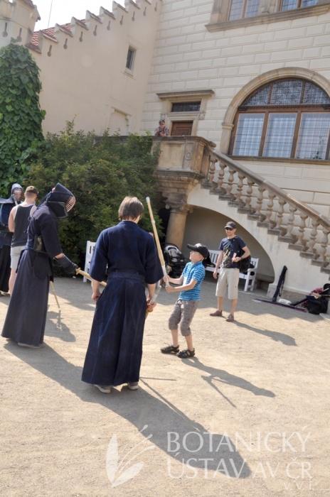 Japonský den 2015 - bojová umění (64)