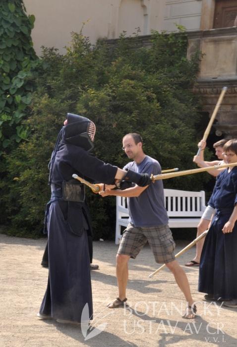 Japonský den 2015 - bojová umění (65)