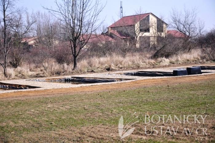 Oprava bazénů budoucí expozice vodních a mokřadních rostlin