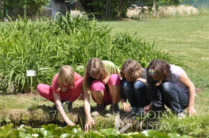 voda patří v zahradě k největším lákadlům