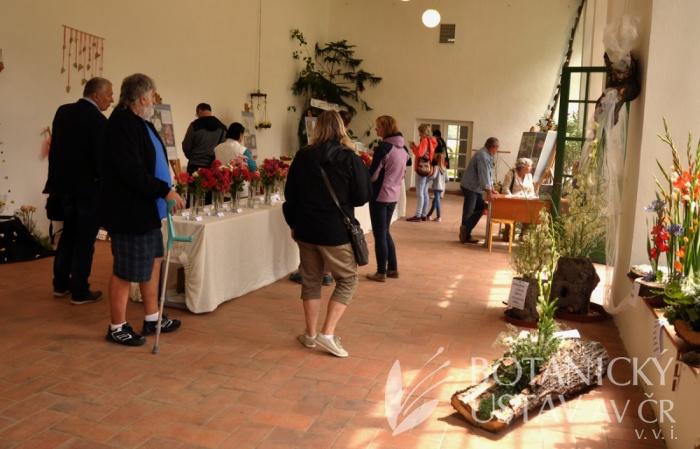 výstava růží Veltrusy (2)
