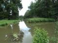 Hráz rybníka Labeška a skalní společenstva