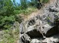 Skály v údolí Dobřejovického potoka
